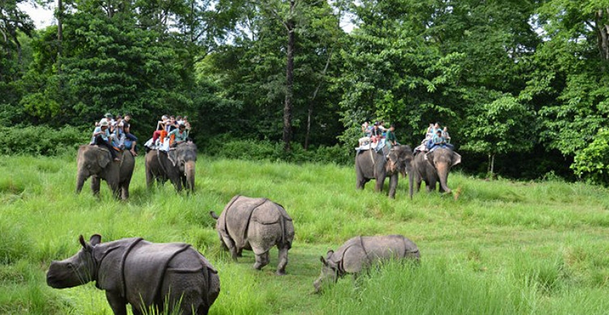 Best Nepal Holiday with Elephant Safari