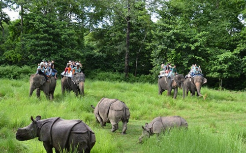 Best Nepal Holiday with Elephant Safari